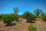 28870 Farthing Way - Photo 35