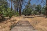 2210 Blue Oak Dr - Photo 36