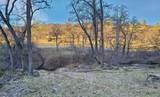 1864 acres Highway 36E - Photo 17