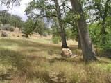 1864 acres Highway 36E - Photo 19