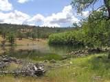 1864 acres Highway 36E - Photo 21