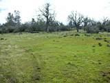 1864 acres Highway 36E - Photo 26