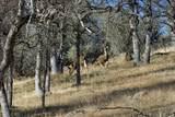 1864 acres Highway 36E - Photo 27
