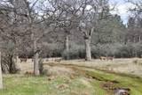 1864 acres Highway 36E - Photo 28