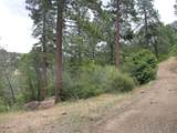 1864 acres Highway 36E - Photo 6