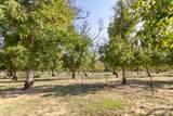 5200 Country Farms Ln - Photo 52