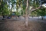 44909 Pine Shadows Rd - Photo 55