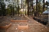 44909 Pine Shadows Rd - Photo 57