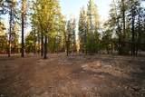 44909 Pine Shadows Rd - Photo 58