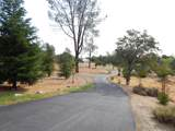 8418 Placer Rd - Photo 64