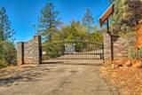 17590 Grey Fawn Trail - Photo 3