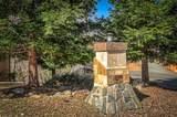 17590 Grey Fawn Trail - Photo 72