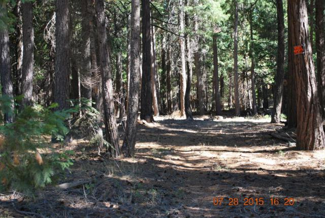 # 8 Westward Ho, Shingletown, CA 96088 (#17-1737) :: Josh Barker Real Estate Advisors