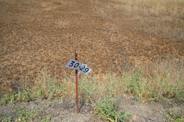 Lot#29 Deer Crest Trl, Cottonwood, CA 96022 (#17-3232) :: 530 Realty Group
