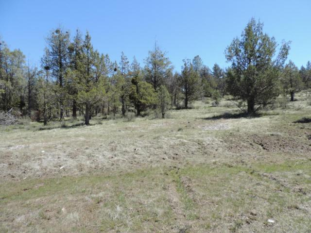 Lot 48 Natchez Court, Fall River Mills, CA 96028 (#18-2239) :: 530 Realty Group