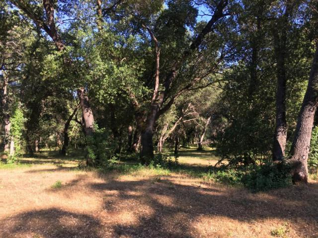 Lot 19 Lahalah Way, Cottonwood, CA 96022 (#18-3143) :: 530 Realty Group