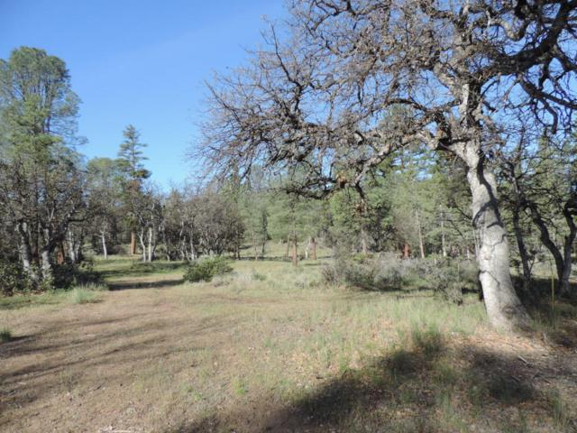 Lot 15 Cassel Fall River Road, Fall River Mills, CA 96028 (#18-3278) :: 530 Realty Group