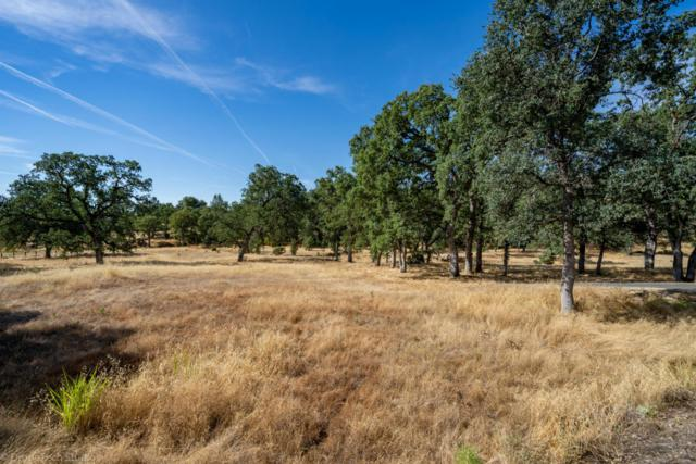 Tudor Oaks Drive #1, Palo Cedro, CA 96073 (#18-3677) :: 530 Realty Group