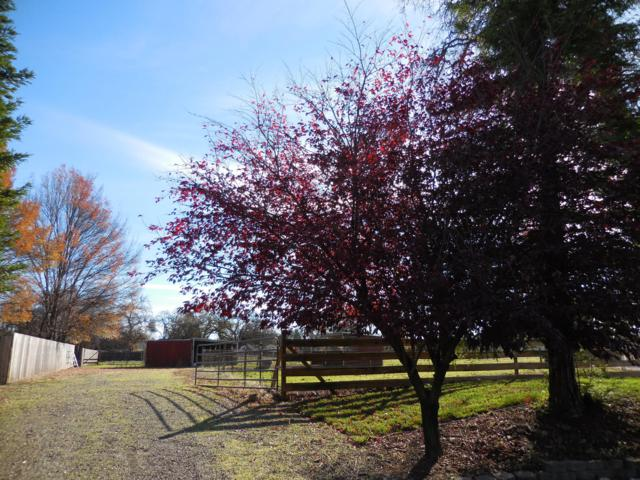 Wagonette Way, Palo Cedro, CA 96073 (#18-4869) :: 530 Realty Group