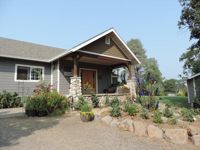 42755 Nez Perce Ct, Fall River Mills, CA 96028 (#18-5231) :: 530 Realty Group