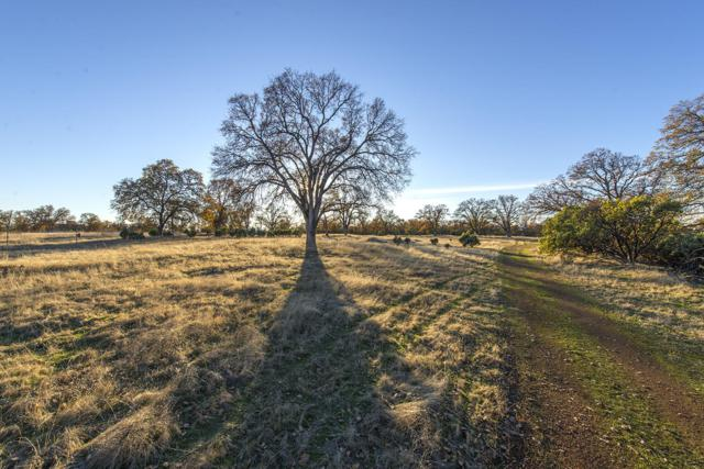 000 Rusty Ln, Palo Cedro, CA 96073 (#18-6761) :: 530 Realty Group