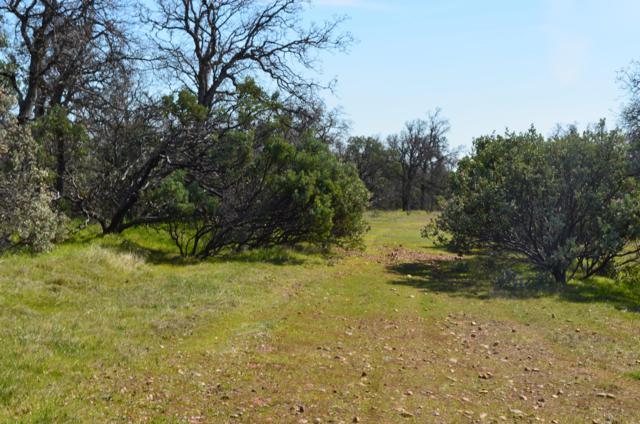 Westridge Rd., Cottonwood, CA 96022 (#19-1214) :: 530 Realty Group