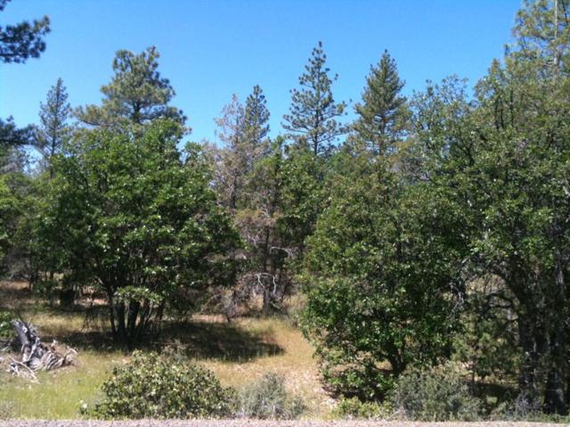 LOT 69 Shoshoni Loop, Fall River Mills, CA 96028 (#19-1742) :: The Doug Juenke Home Selling Team