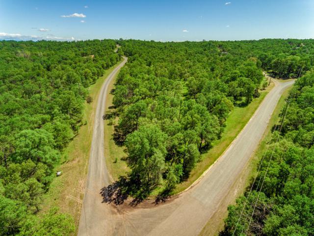 Lot 10 Spotted Fawn Ln, Red Bluff, CA 96080 (#19-1939) :: Josh Barker Real Estate Advisors