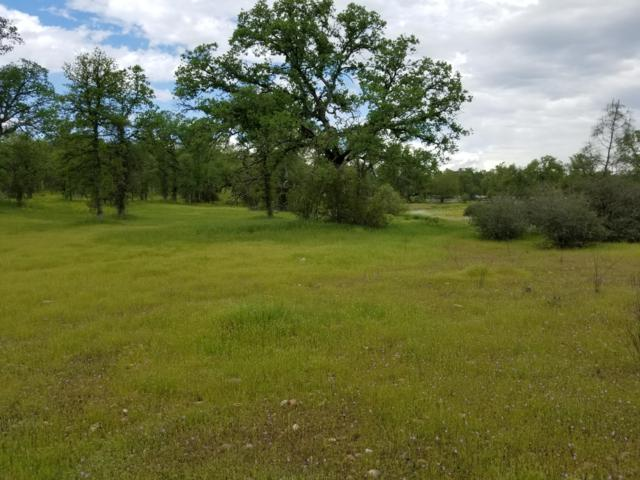 7.49 Acres Hidden Ln, Palo Cedro, CA 96073 (#19-2001) :: 530 Realty Group