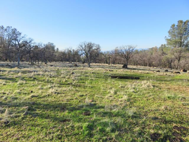 97+ acres Wildcat Road, Shingletown, CA 96088 (#19-213) :: 530 Realty Group