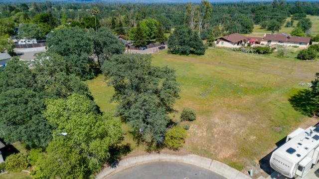 19490 Vista Del Monte Ct, Redding, CA 96003 (#19-2358) :: The Doug Juenke Home Selling Team