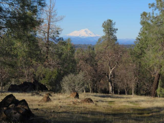40 acres Wildcat Road, Shingletown, CA 96088 (#19-239) :: 530 Realty Group