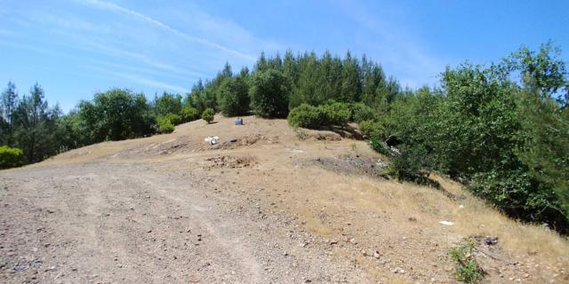 20 acres Backbone Ridge Road, Bella Vista, CA 96008 (#19-2524) :: The Doug Juenke Home Selling Team