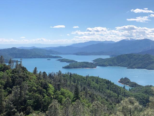Lone Hawk View, Lakehead, CA 96051 (#19-2576) :: 530 Realty Group