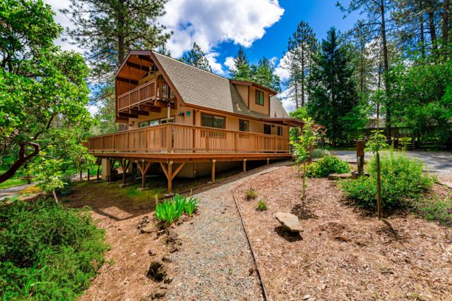 6659 Black Butte Rd, Shingletown, CA 96088 (#19-2746) :: 530 Realty Group