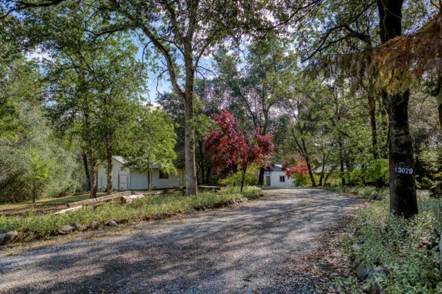 13079 Fernie Way, Redding, CA 96003 (#19-2768) :: 530 Realty Group