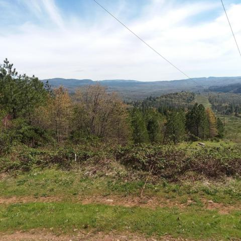40 Acres Off Cove Rd, Montgomery Creek, CA 96065 (#19-2840) :: Wise House Realty