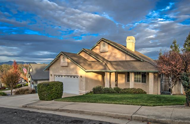 1039 Edgewater Ct, Redding, CA 96003 (#19-3231) :: Wise House Realty