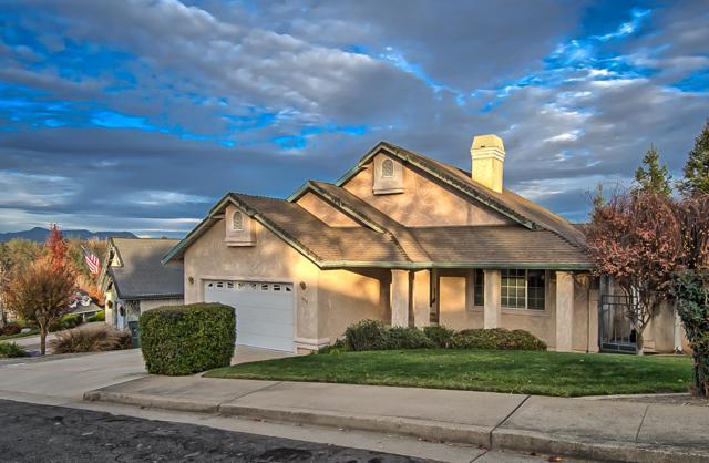 1039 Edgewater Ct, Redding, CA 96003 (#19-3231) :: The Doug Juenke Home Selling Team