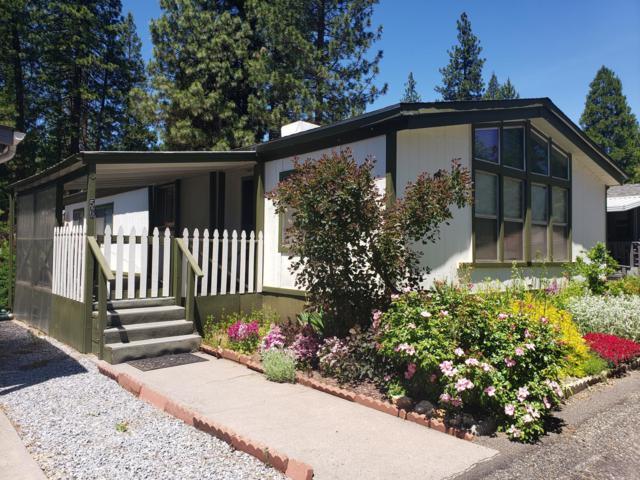 36766 State Highway #56, Burney, CA 96013 (#19-3275) :: The Doug Juenke Home Selling Team