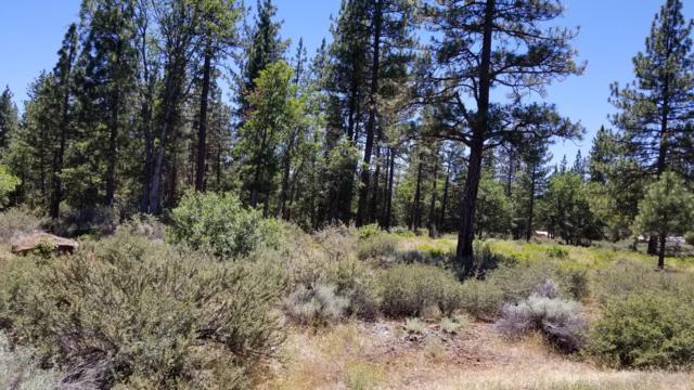 39295 Eaglet Dr, Cassel, CA 96016 (#19-3582) :: Vista Real Estate