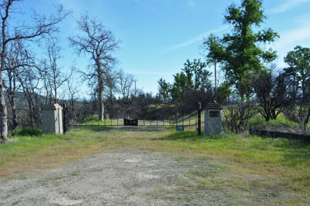 Nedra Ln, Happy Valley, CA 96007 (#19-3698) :: Josh Barker Real Estate Advisors