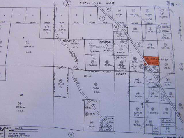 Hwy 139, Adin, CA 96006 (#19-3789) :: Real Living Real Estate Professionals, Inc.