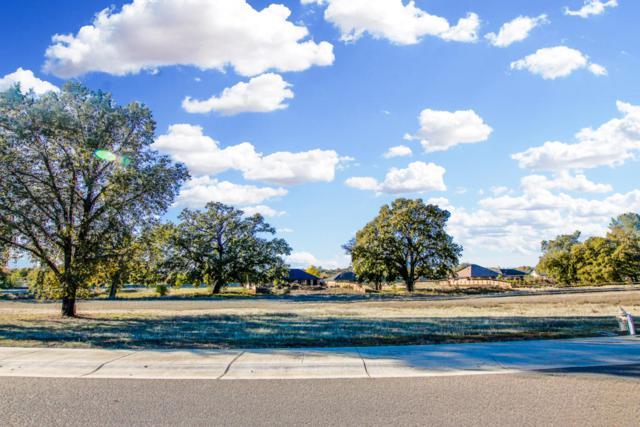 Lot 32 Palo Cedro Oaks, Palo Cedro, CA 96073 (#19-3820) :: The Doug Juenke Home Selling Team