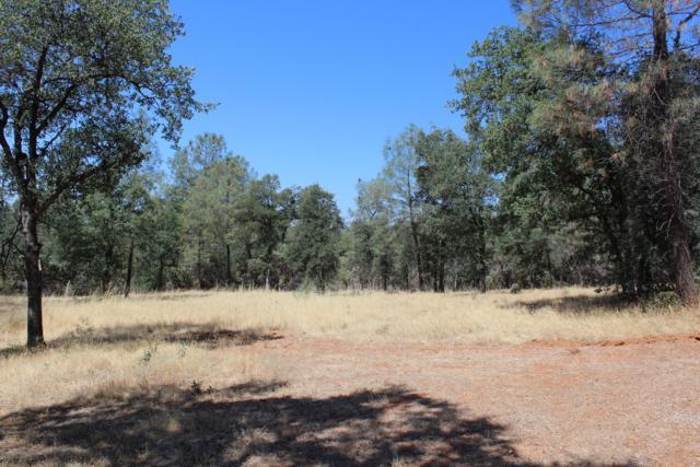 2.5 Acres Off Javalena Rd, Bella Vista, CA 96008 (#19-4155) :: The Doug Juenke Home Selling Team