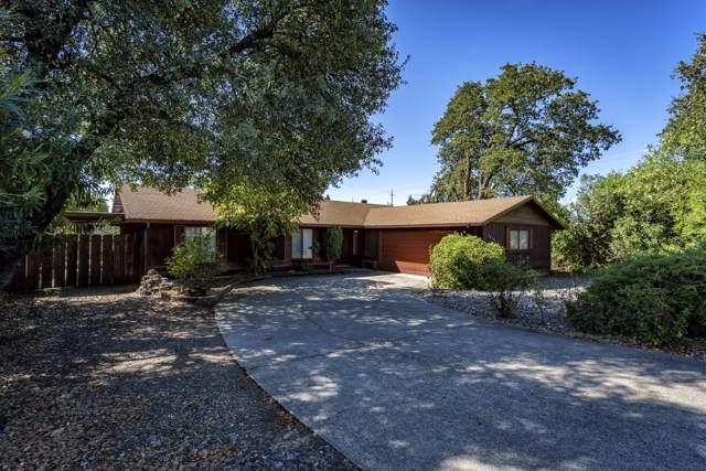 1027 Mistletoe Ln, Redding, CA 96002 (#19-5066) :: The Doug Juenke Home Selling Team