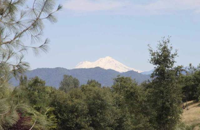 Lot 7 Destiny Dr, Redding, CA 96001 (#19-5324) :: Waterman Real Estate