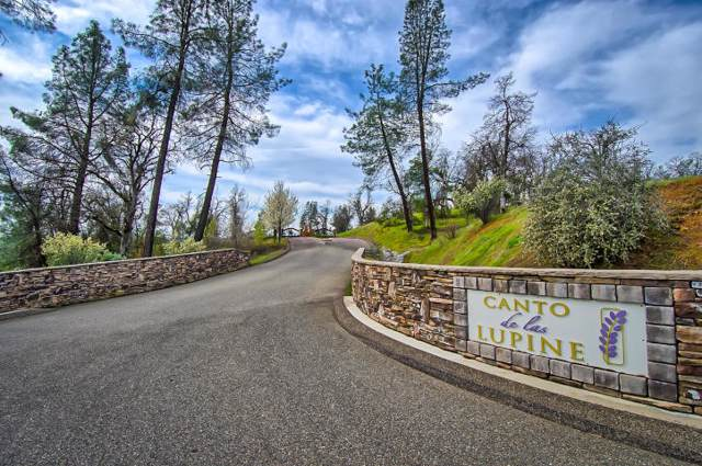 Lot 11 Canto De Las Lupine, Redding, CA 96001 (#19-5486) :: Wise House Realty