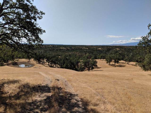 000 Highway 36 West, Red Bluff, CA 96080 (#19-5490) :: 530 Realty Group