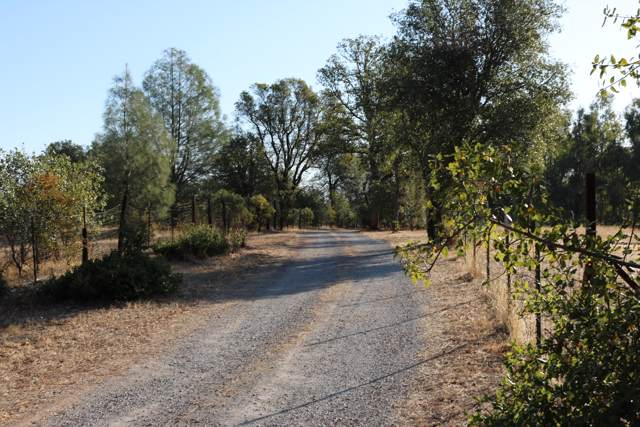5 acres Dynasty Lane, Redding, CA 96003 (#19-5492) :: Wise House Realty
